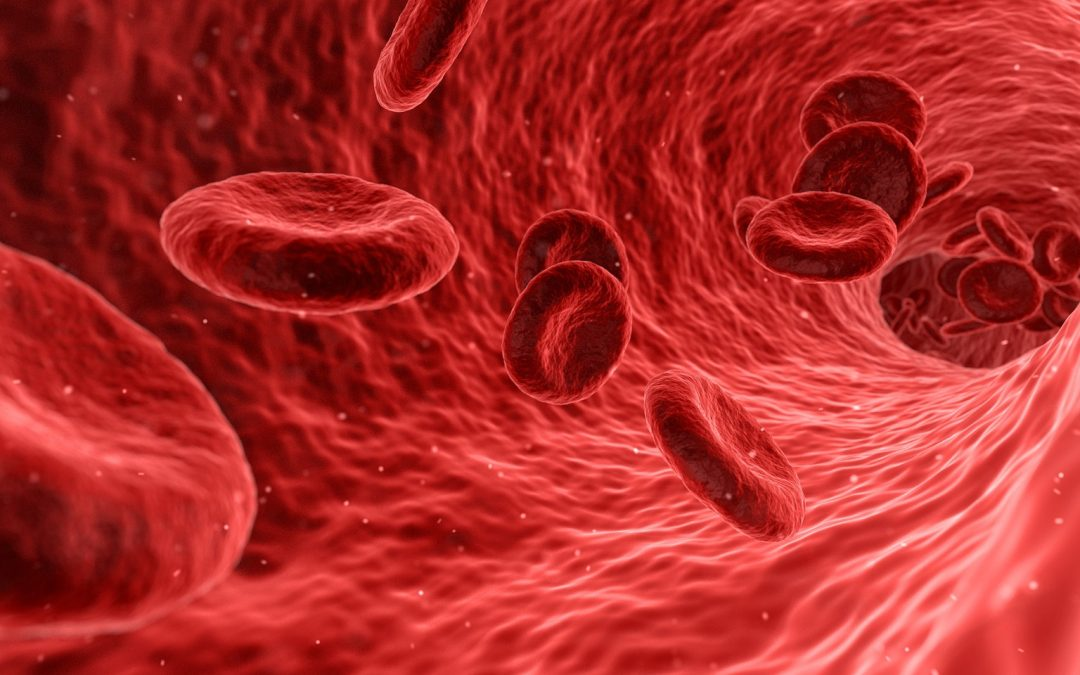 Thyroid Blood Testing Red Blood Cells